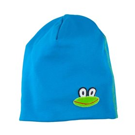 Blue cap with frog